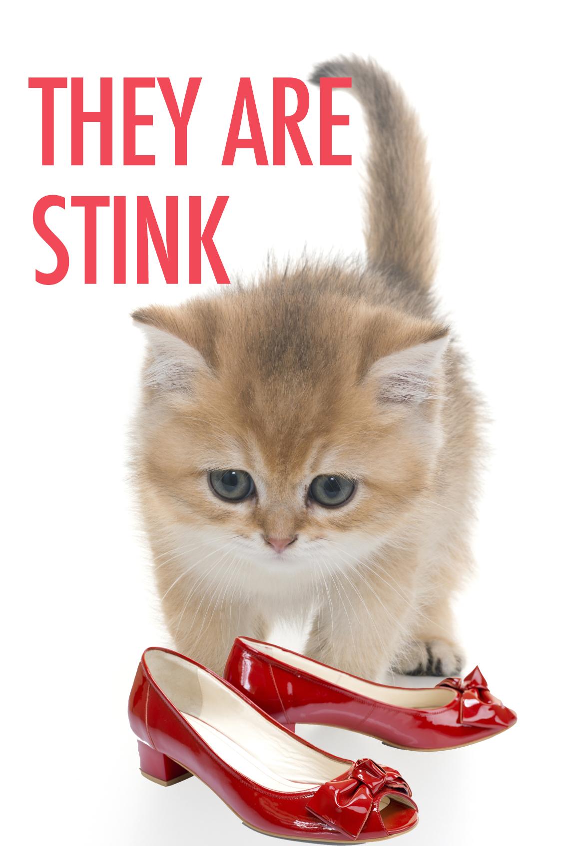 Funny Kitten Heels