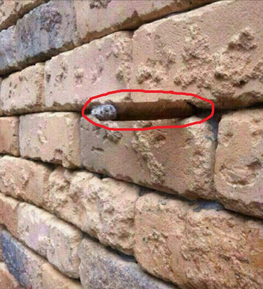 Brick wall optical illusion: Facebook user baffles the Internet