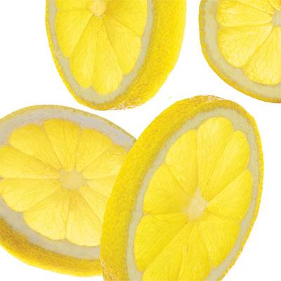 1003p33-sliced-lemons-l