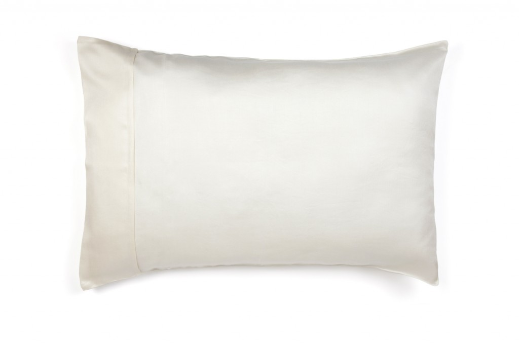 The Ethical Silk Co - Ivory Natural Silk Pillow Case with Pillow - Plain