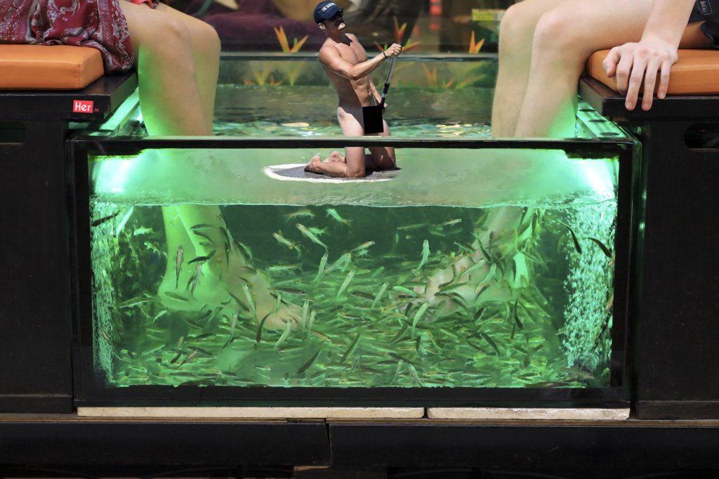 two girls holding their feet into a fish basin for Garra rufa pedicure spa treatment