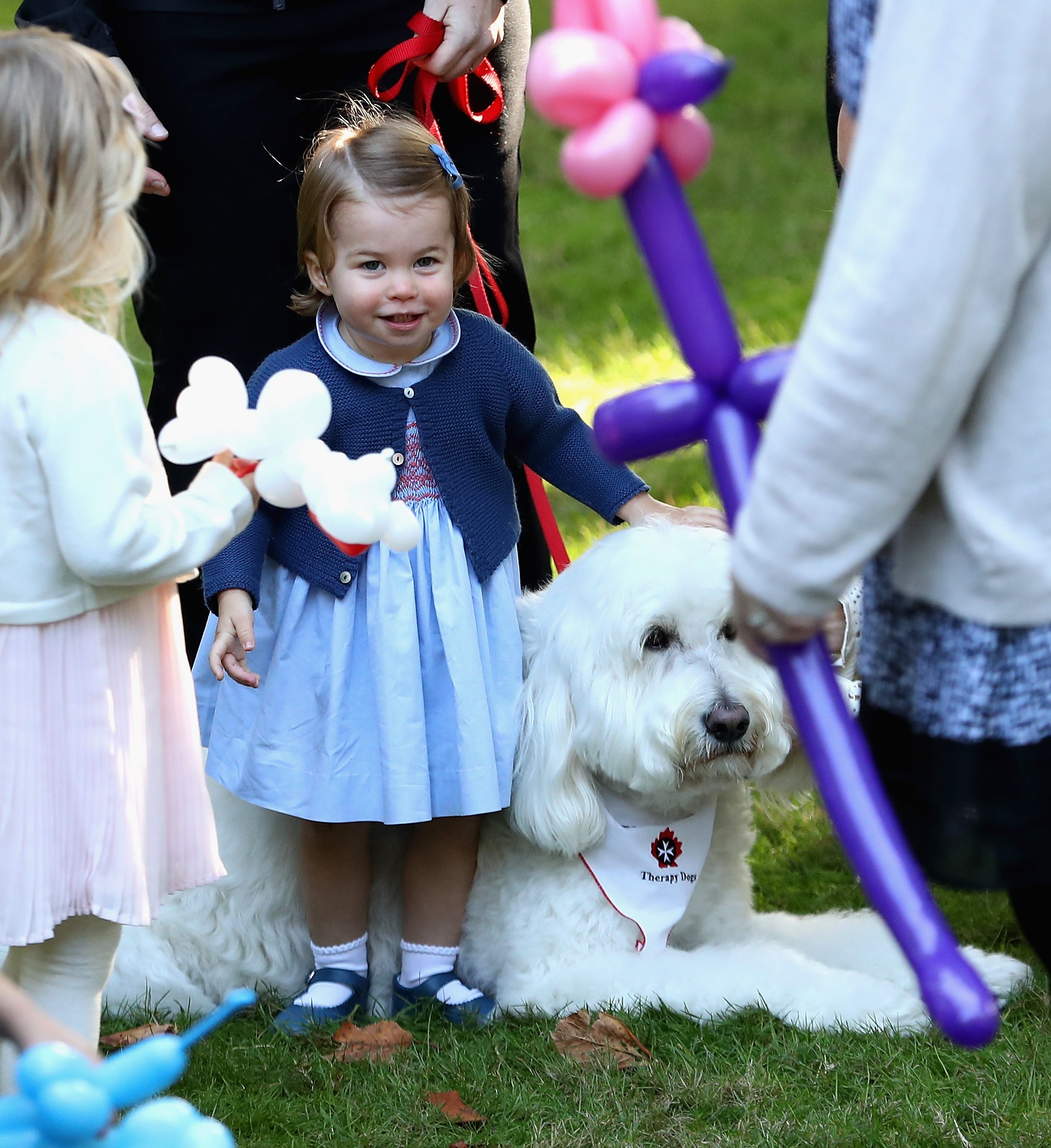 VICTORIA, BC - SEPTEMBER 29: Princess Charlotte of Cambridge plays with a dog named Moose at a children's party for Military families during the Royal Tour of Canada on September 29, 2016 in Victoria, Canada. Prince William, Duke of Cambridge, Catherine, Duchess of Cambridge, Prince George and Princess Charlotte are visiting Canada as part of an eight day visit to the country taking in areas such as Bella Bella, Whitehorse and Kelowna (Photo by Chris Jackson - Pool/Getty Images)