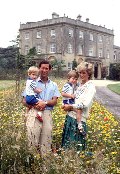 UNITED KINGDOM - JULY 14: The Prince And Princess Of Wales With Prince William & Prince Harry In The Wild Flower Meadow At Highgrove Bought For His Use By The Duchy Of Cornwall. (Photo by Tim Graham/Getty Images)