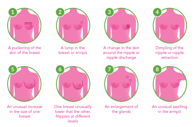 Women urged to seek breast cancer screening