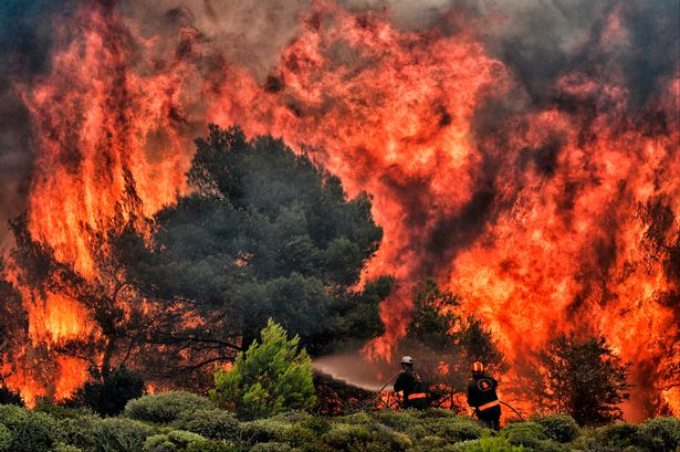 Greece fires: state of emergency declared as deadly blazes rage