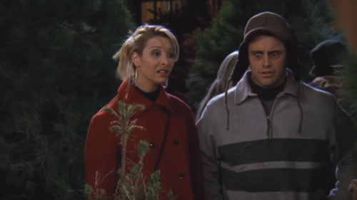 "Rachel gets fed up of her job at the Coffee House, while Phoebe takes umbrage that Joey is selling Christmas trees. She's firmly against ""innocent trees ..."