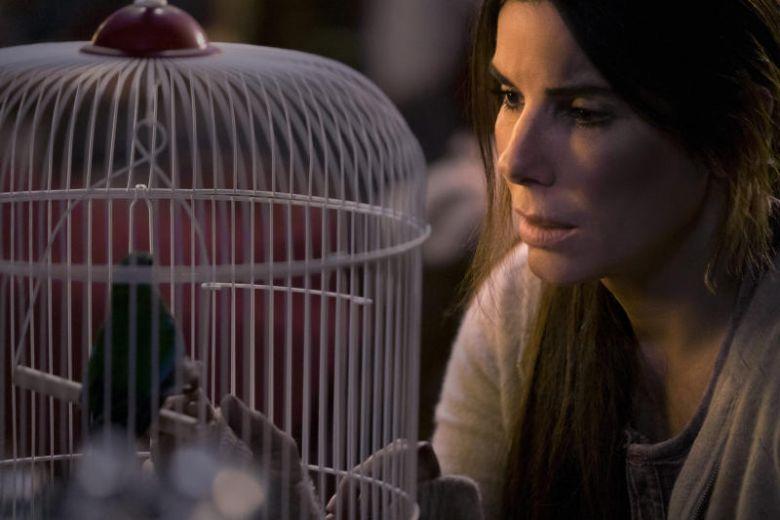 Netflix warns against doing 'Bird Box' meme challenge