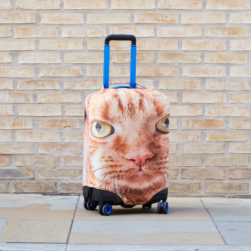 You Can Now Get A Suitcase With Your Dog S Face Printed