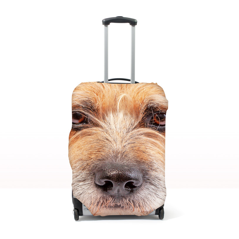 d2b45b212 Promising to help you 'paws-onalise' your luggage, it comes in three  different options: a small (for cats 45cm to 56 cm tall), medium (for cases  64 cm to 76 ...