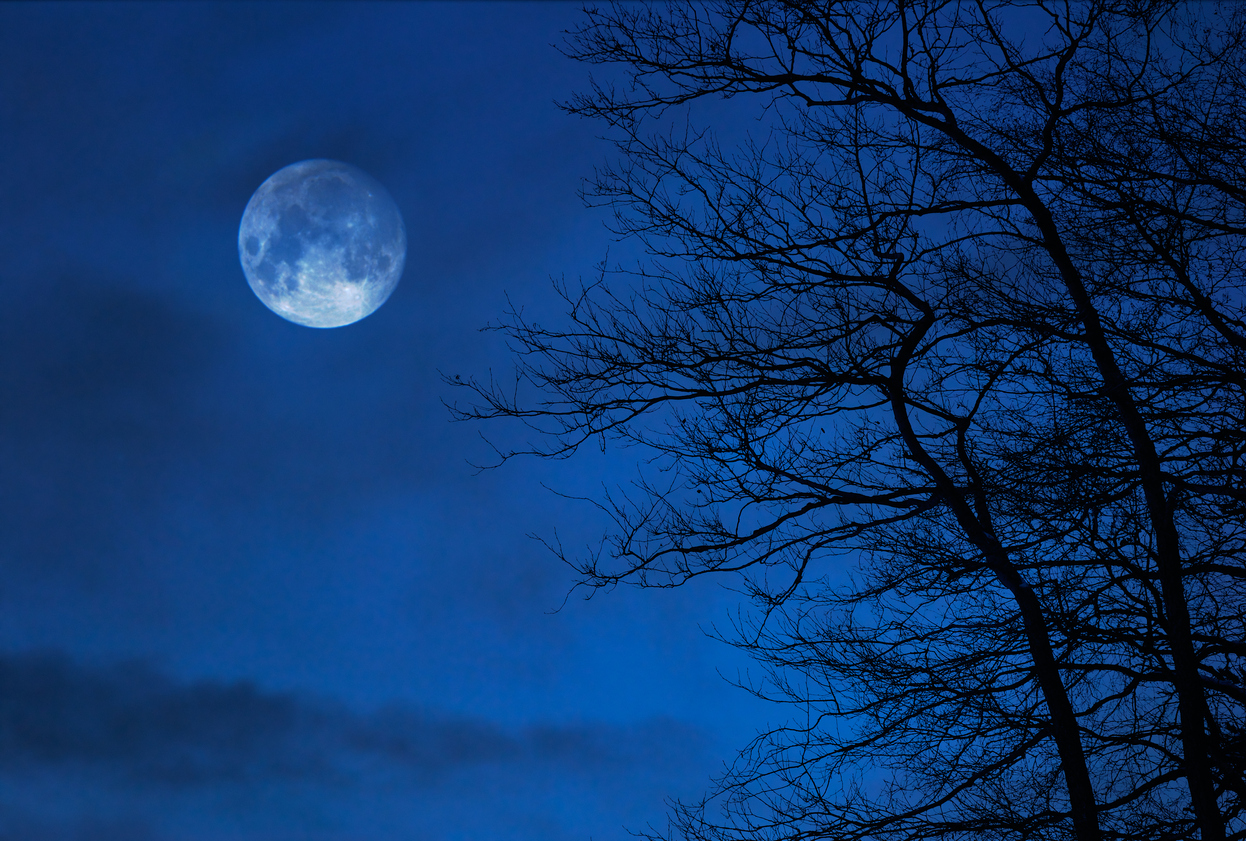 'Once in a Blue Moon' Phenomenon to be Observed Today